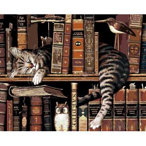Отдых ученого кота Раскраска по номерам на холсте Живопись по номерам RA148
