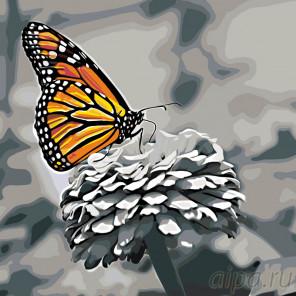 Схема Прекрасная бабочка Раскраска по номерам на холсте Живопись по номерам RA155