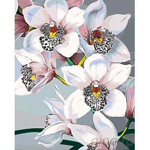 Схема Стильные орхидеи Раскраска по номерам на холсте Живопись по номерам F45