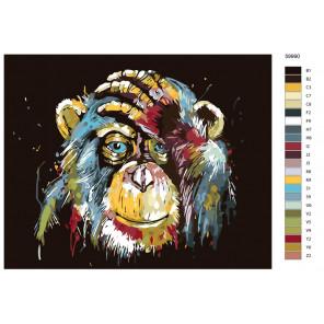 Раскладка Портрет радужной шимпанзе Раскраска по номерам на холсте Живопись по номерам KTMK-59990