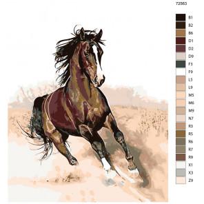 Раскладка Пыль из-под копыт Раскраска по номерам на холсте Живопись по номерам KTMK-72563