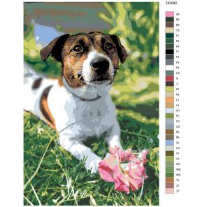 Раскладка Роза для хозяйки Раскраска по номерам на холсте Живопись по номерам Z-Z42082