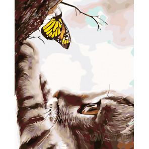 Раскладка Любопытный котенок с бабочкой Раскраска картина по номерам на холсте KTMK-41133