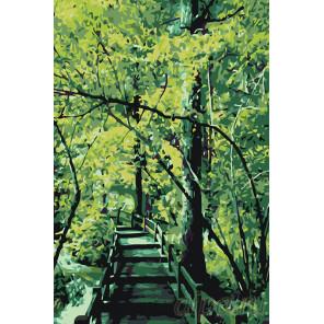 Раскладка Мостик в лесу Раскраска картина по номерам на холсте KTMK-71655