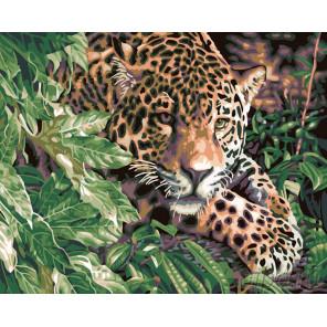 Раскладка Леопард в зарослях Раскраска картина по номерам на холсте KTMK-77815
