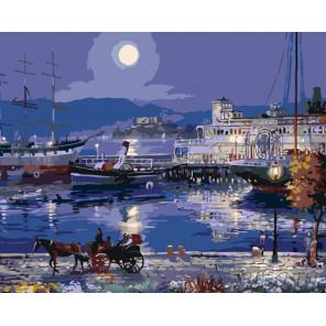 Раскладка Лунная ночь Раскраска картина по номерам на холсте KTMK-55929