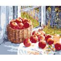 Летние яблоки Раскраска картина по номерам на холсте KTMK-77993