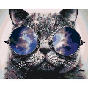 Стильный кот Раскраска по номерам на холсте Живопись по номерам KTMK-393606