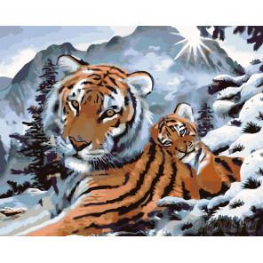 Ласковый тигренок Раскраска картина по номерам на холсте KTMK-23741