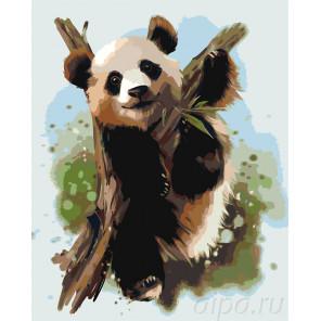 Малыш панда Раскраска по номерам на холсте Живопись по номерам Z-AB50