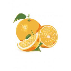 Сочный апельсин Раскраска по номерам на холсте Живопись по номерам KTMK-25626