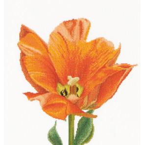 Оранжевый тюльпан Триумф Набор для вышивания Thea Gouverneur 523A