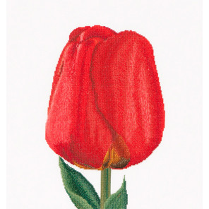 Красный тюльпан Набор для вышивания Thea Gouverneur 521A