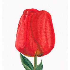 Красный тюльпан Дарвинов гибрид Набор для вышивания Thea Gouverneur 521