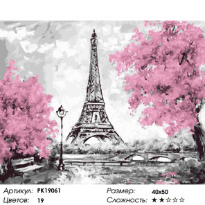 Количество цветов и сложность Розовые краски Парижа Раскраска картина по номерам на холсте PK19061