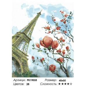 Количество цветов и сложность Цветущие деревья Парижа Раскраска картина по номерам на холсте PK19035
