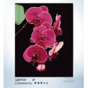 Количество цветов и сложность Утонченность орхидеи Раскраска по номерам на холсте Hobbart HB4050065-LITE