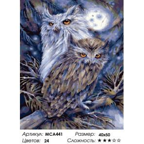 Количество цветов и сложность Совы в лунную ночь Раскраска картина по номерам на холсте МСА441