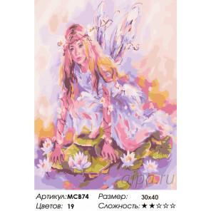 Количество цветов и сложность Фея на кувшинке Раскраска картина по номерам на холсте МСВ74