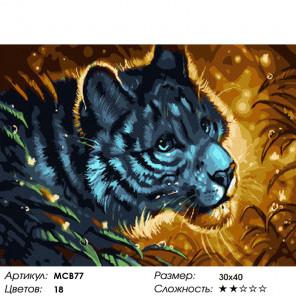 Количество цветов и сложность Тигр в ночи Раскраска картина по номерам на холсте МСВ77
