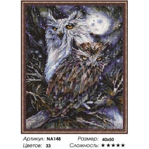 Количество цветов и сложность Совы в лунную ночь Алмазная мозаика вышивка Painting Diamond NА148