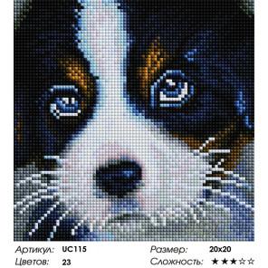 Количество цветов и сложность Очаровательный щенок Алмазная мозаика вышивка Painting Diamond UС115