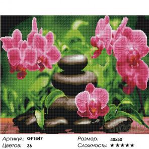Количество цветов и сложность Гармония орхидеи вышивка Алмазная мозаика вышивка Painting Diamond GF1847