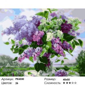 Количество цветов и сложность Сортовая сирень Раскраска картина по номерам на холсте PK6030
