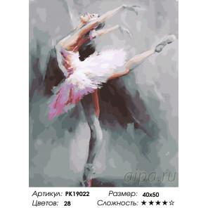 Количество цветов и сложность Великолепие балета Раскраска картина по номерам на холсте PK19022