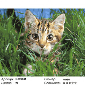Количество цветов и сложность Котёнок в траве Раскраска картина по номерам на холсте GX29634