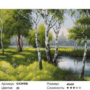 Количество цветов и сложность Летние березки у пруда Раскраска картина по номерам на холсте GX29438
