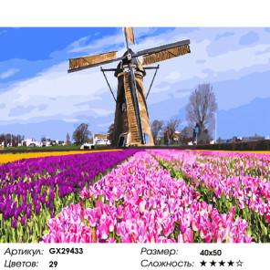 Тюльпаны и мельница Раскраска картина по номерам на холсте GX29433