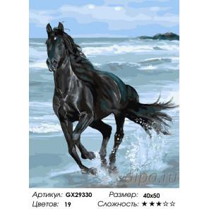 Количество цветов и сложность Аромат свободы Раскраска картина по номерам на холсте GX29330