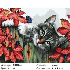 Количество цветов и сложность Пушистый озорник Раскраска картина по номерам на холсте GX29246