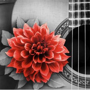 Цветок на гитаре Алмазная вышивка мозаика АЖ-1772