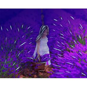 В лавандовом поле Картина по номерам люминесцентная LPK24056