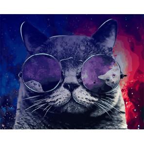 Космический кот Картина по номерам люминесцентная LPK24053