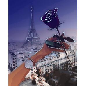 Роза Парижа Картина по номерам люминесцентная LPK24010