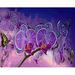 Цветок орхидеи Картина по номерам люминесцентная LPK22058
