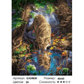 Сложность и количество цветов Волк у воды Раскраска картина по номерам на холсте GX24830
