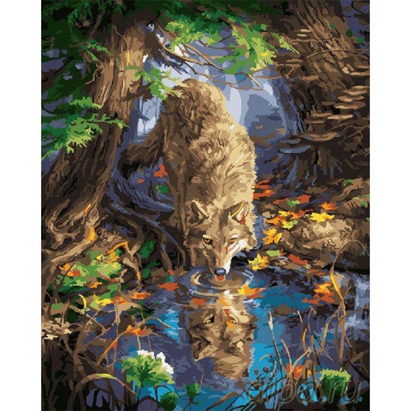 GX24830 Волк у воды Раскраска картина по номерам на холсте ...
