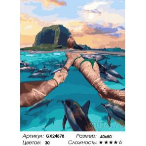 Сложность и количество цветов Следуй за мной. В океане с дельфинами Раскраска картина по номерам на холсте GX24878