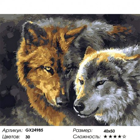 GX24985 Волк и волчица Раскраска картина по номерам на ...