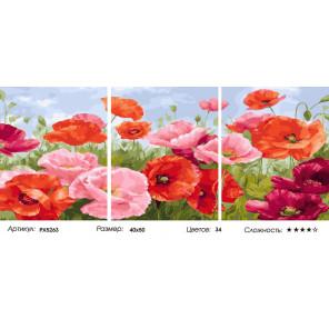 Сложность и количество цветов Яркие маки Триптих Раскраска картина по номерам на холсте РX5263