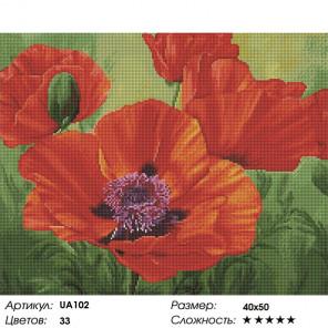 Сложность и количество цветов Красные маки Алмазная вышивка мозаика на подрамнике UА102