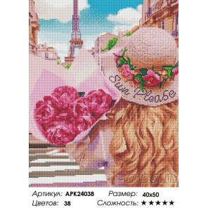 Сложность и количество цветов Нежность в Париже Алмазная вышивка мозаика на подрамнике APK24038