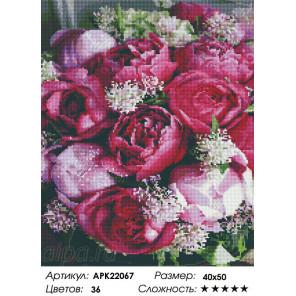 Сложность и количество цветов Розовые пионы Алмазная вышивка мозаика на подрамнике APK22067