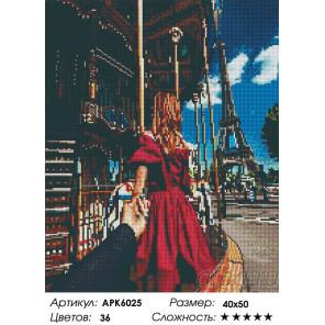 Следуй за мной. Париж Алмазная вышивка мозаика на подрамнике APK6025