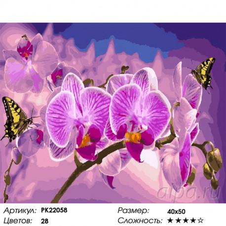 PK22058 Цветок орхидеи Раскраска картина по номерам на ...
