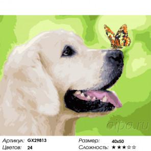 Сложность и количество цветов Любопытный щенок Раскраска картина по номерам на холсте GX29813